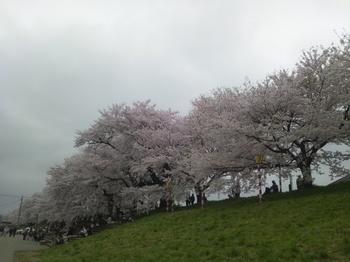 2012-04-25 15.00.50.JPG